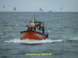 Plus de 80 navires de pêche sont en activité