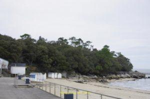 Bois de la Chaize vu de la plage des Dames